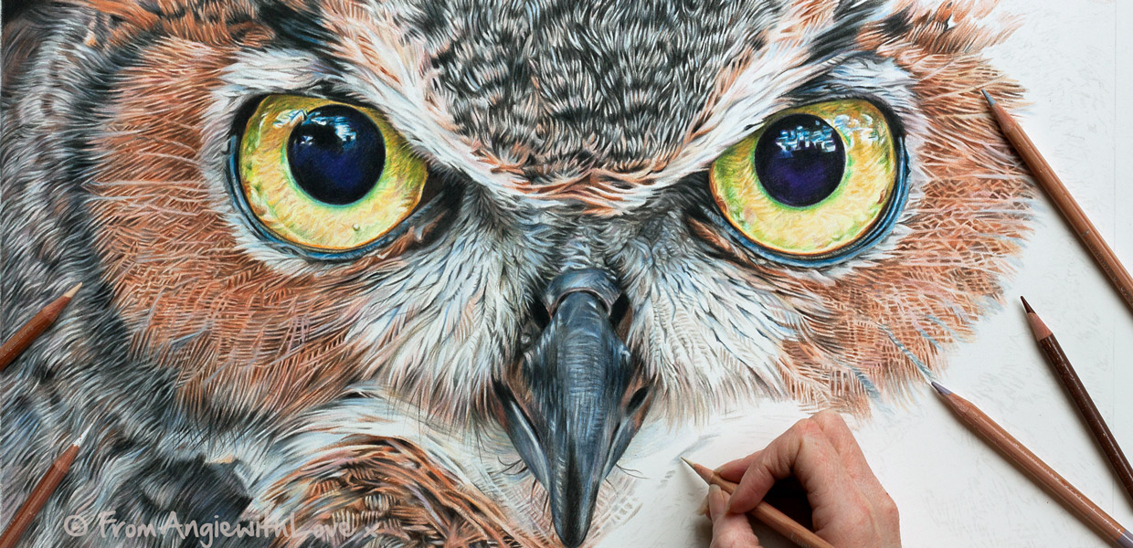 Eagle Owl by wildlife portrait artist Angie