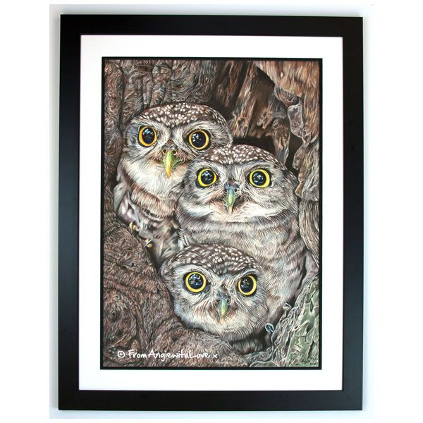 Fledging Day Framed Print