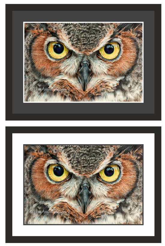 A Thousand Yard Stare Eagle Owl Portrait