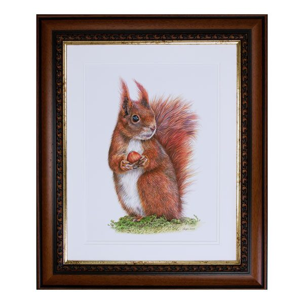 Caching In Red Squirrel Portrait Framed