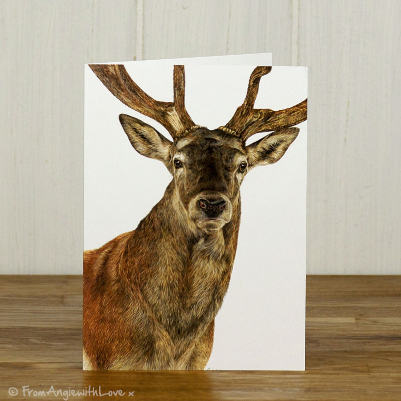 Monarch Red Deer Stag Greeting Card
