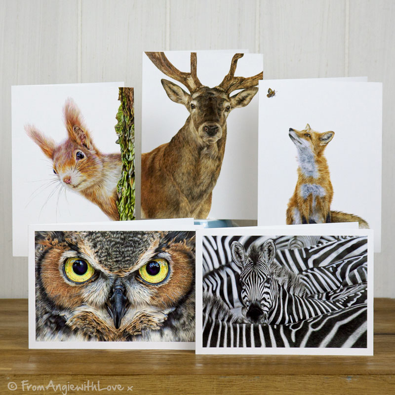 Wildlife Art Greeting Cards Pack
