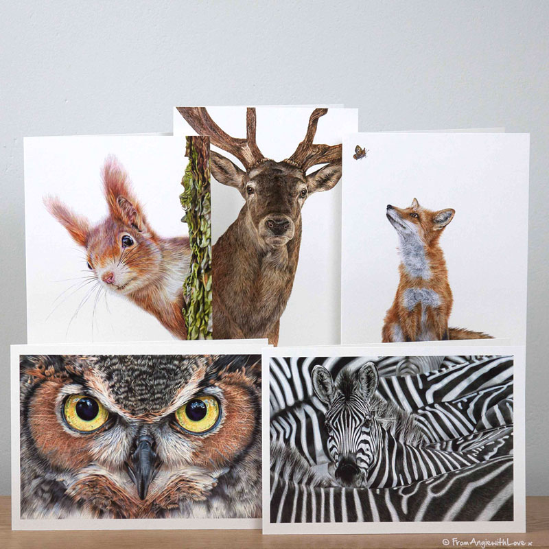 Wildlife portraits greeting cards pack by wildlife artist Angie
