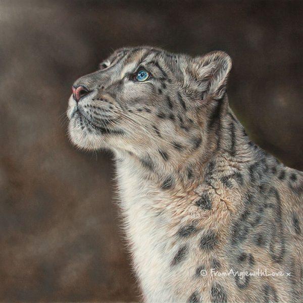 Mountain Spirit - Snow Leopard wildlife art print