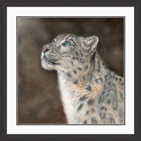 Mountain Spirit Snow Leopard Portrait in Black Frame