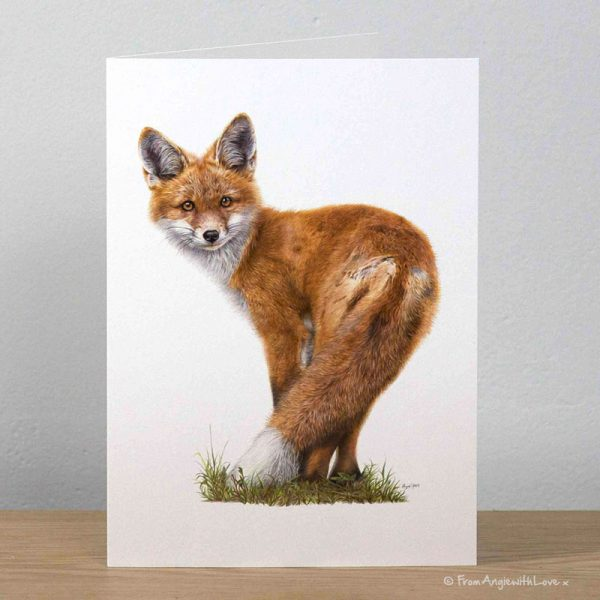 Brief Encounter Red Fox Greeting Card by Pencil artist Angie