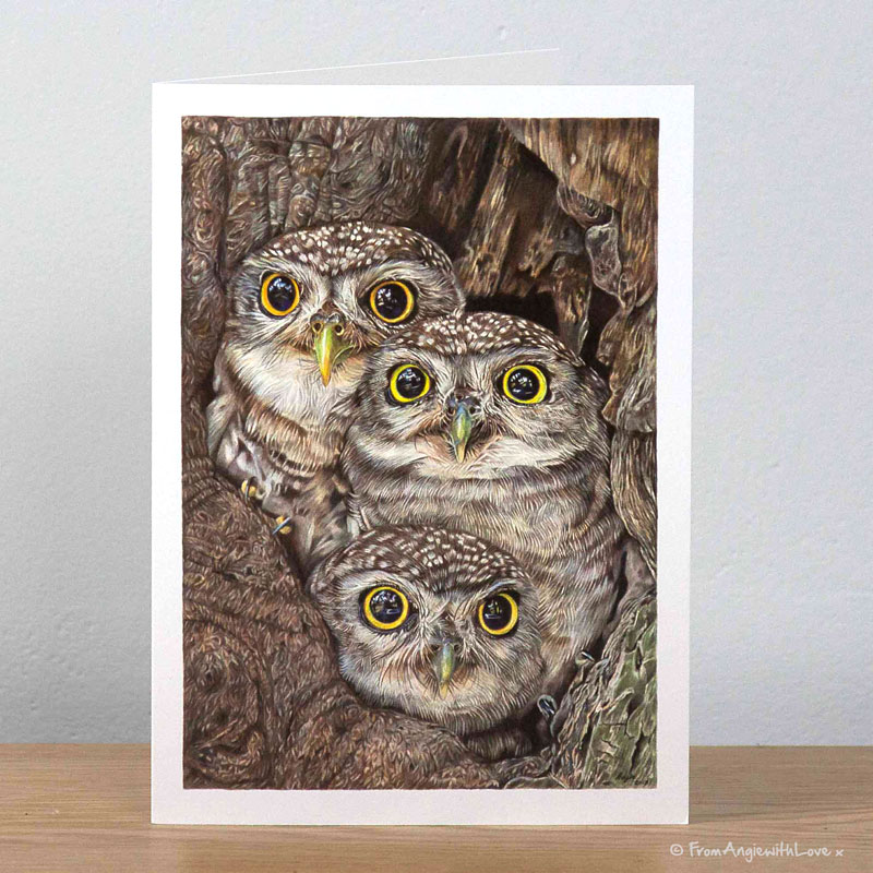 Fledging Day Little Owls Greeting Card by Pencil artist Angie
