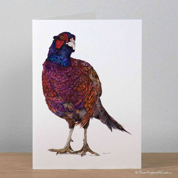 Inquisitive George Pheasant Greeting Card by Pencil artist Angie