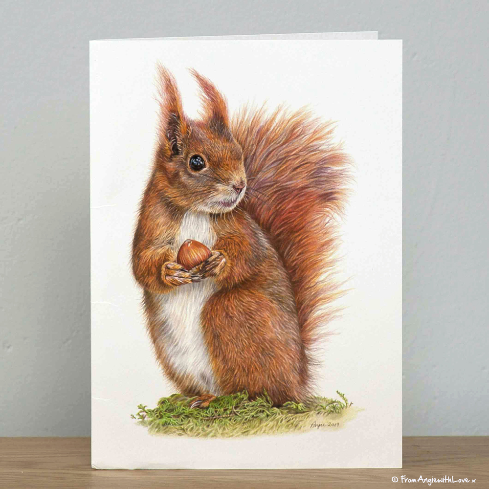 Caching In Red Squirrel greeting card by wildlife artist Angie