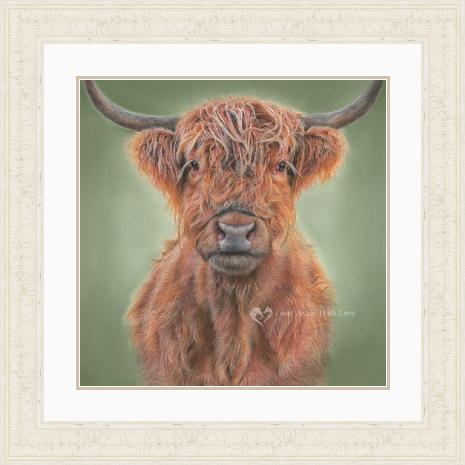 'Hamish' Highland Cow Portrait in an Ivory Frame