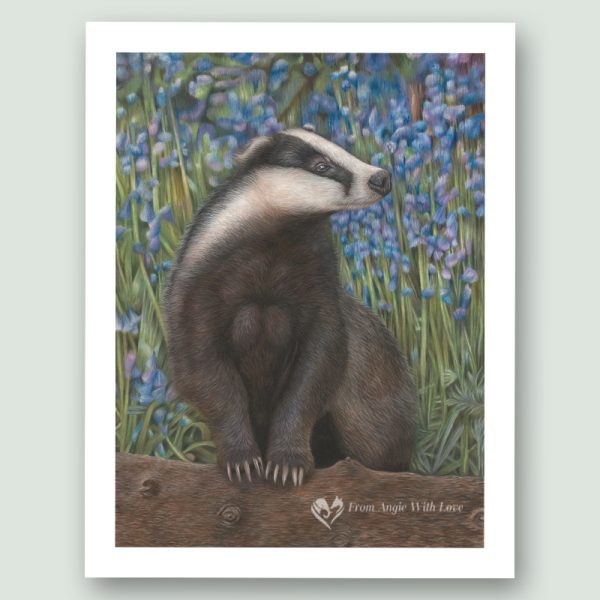 'Bluebell Wood' Badger portrait, by wildlife artist Angie x