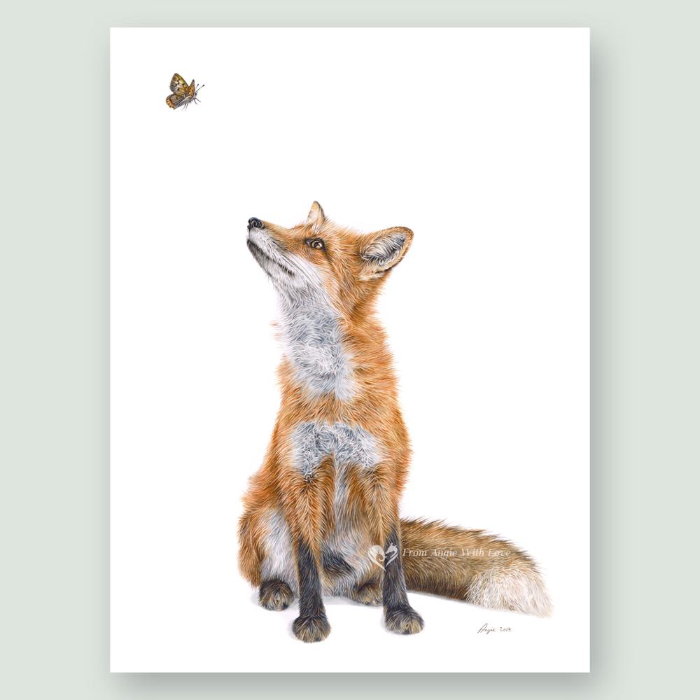 Fluttering Heights - Coloured pencil Fox portrait by wildlife portrait artist Angie