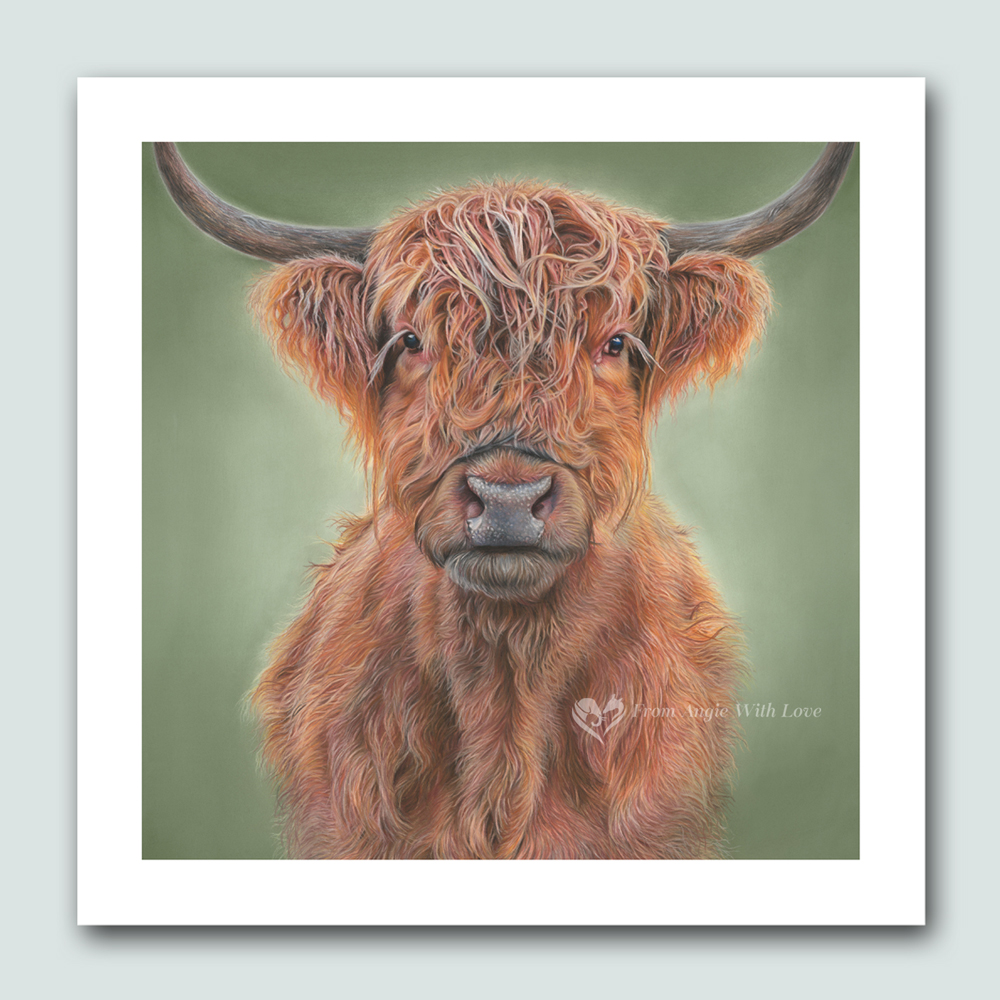 'Hamish' Highland Cow Wildlife Art Print