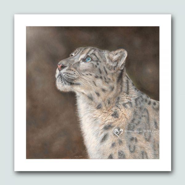 Mountain Spirit - Snow Leopard wildlife art print by pencil artist Angie x