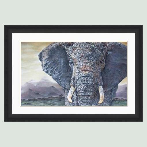 'Tembo' African Elephant Portrait in Black Frame