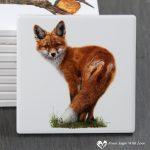 Fox Coaster - Brief Encounter