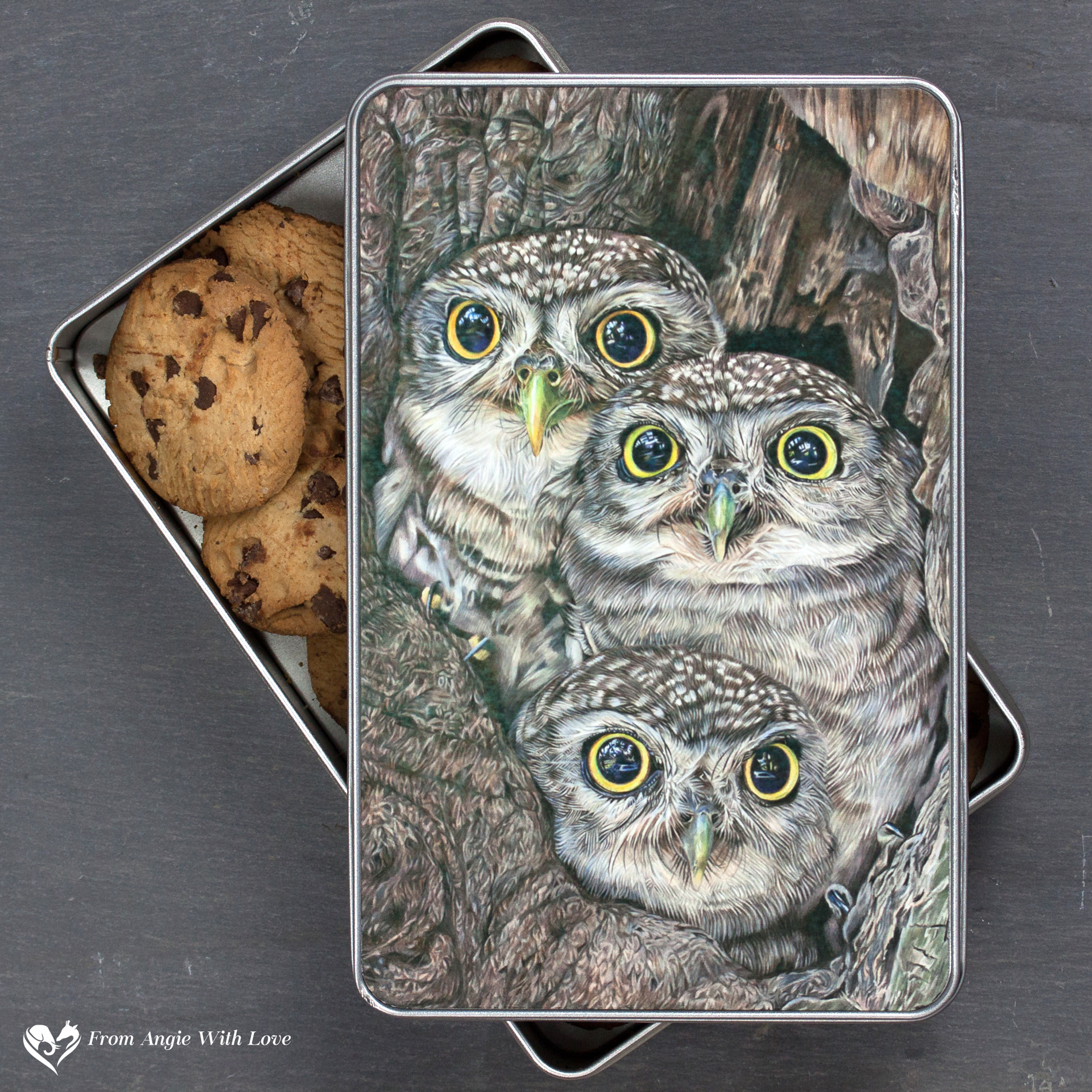Little Owl Biscuit Tin - Fledging Day