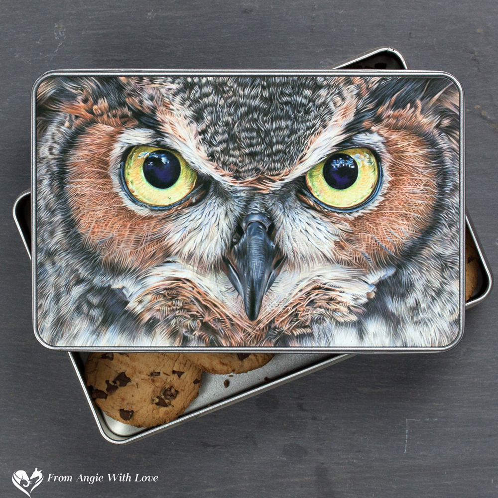 Eagle Owl Biscuit Tin - A Thousand Yard Stare
